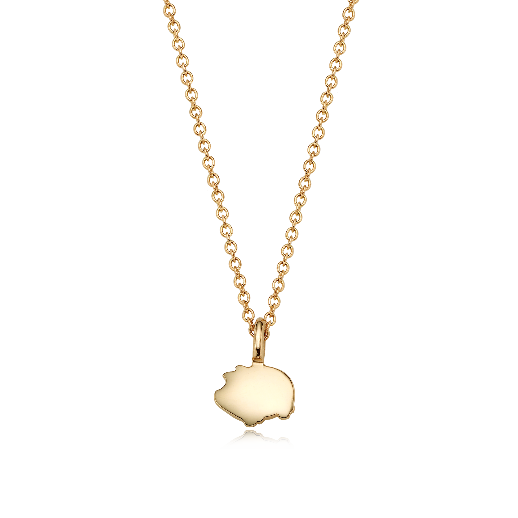 14K/18k Gold Mini Oriental Zodiac Pig Necklace